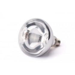 Ampoule pour lampe...